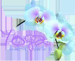Yoga Orchid - Meditation and Yoga Weekend